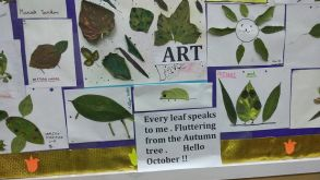 DRY LEAF ACTIVITY ( CLASS II)